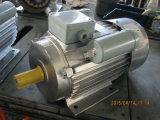 Motor eléctrico giratorio la monofásico de Yl pequeño