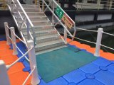 Het plastic Drijvende Huis van het Platform van de Kubus van het Ponton Drijvende