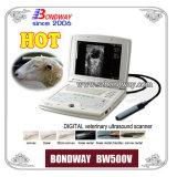 Ultrason vétérinaire pour l'imagerie porcine, ovine, féline, canine, etc Bw500V