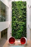 녹색 벽 구 Wall00898810037의 고품질 인공적인 플랜트 그리고 꽃