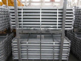 En12810 China Ringlock Scaffodling /Scaffold voor Bouw