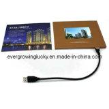 Карточка изготовленный на заказ экрана LCD видео- для рекламы