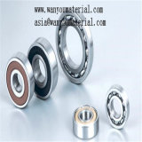 Thin-Walled Metrische Lagers van uitstekende kwaliteit 6900 RS