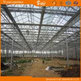 広く使用されたVenloの構造の美しいガラス温室