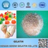 Gelatine Halal