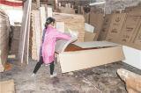 Estilo moderno de madera maciza compuesto HDF puerta del hotel de Apartamento Puerta Puerta Escuela para Oriente Medio (ZX-09)