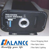 Halogeen Light Source (h-75.100, h-75DMX, 100DMX)