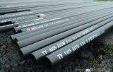 직업적인 생산자 SA210A 탄소 이음새가 없는 강철 관 공장