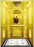 [جرمن] محترفة مسافر مصعد بدون آلة غرفة ([رلس-225])