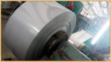 Stainless laminato a freddo Steel Coil/Strip per Making Stainless Steel Pipe