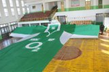Flag gigante per Festival/Advertisement/Sports (0010)
