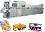 CE Proved Wafer Baking Oven (15-75 plaques)