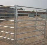 La rete fissa utilizzata del cavallo dell'azienda agricola riveste i comitati di pannelli del bestiame per il servizio del Canada