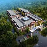 Вид с воздуха перевод конструкции школы архитектурноакустический с волшебной технологией