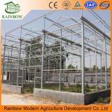Invernadero de vidrio multi-span duradero para plantación de vegetales y flores