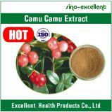 Polvo natural del extracto de Camu del extracto