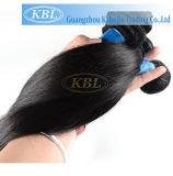 Os pacotes brasileiros do cabelo podem ser tingidos