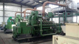 中国の工場からのCumminsの無声発電機が付いている生物量の発電機