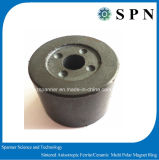 Magnete del ferrito per il motore con l'alta qualità