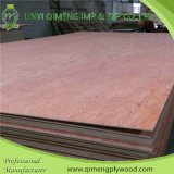 Competitive Price를 가진 포플라 Core Two Time Hot Press Bintangor Plywood