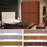 Festes Holz 2 Türen, die Garderobe (ZH5015, schieben)