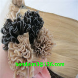7agrade Kertain Prebonded U TIP Hair Extension