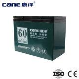 bateria profunda do poder de bateria do ciclo 60ah (14-65ah)
