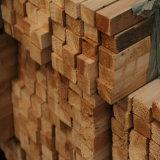 Porte en bois intérieure en bois de forces de défense principale de sûreté économique (SC-W050)