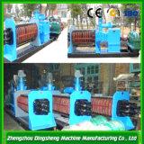 Nueces de anacardo doble eje expulsor de aceite, molino de aceite Maquinaria De Dingsheng