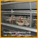 Автоматический тип клетки h батареи цыплятины для курочки