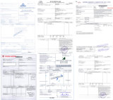 Pp., die Riemen-Produktions-Strangpresßling-Zeile mit CER, ISO packen