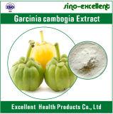 Естественный порошок выдержки Cambogia Garcinia