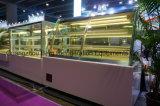 Gute Qualitätshandelskühlraum-Marmor-Unterseiten-Kuchen-Bildschirmanzeige-Schaukasten