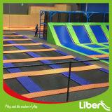 Fabbrica superiore dei giochi dell'interno del trampolino