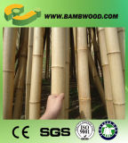 Billig und Highquality Dyed Mahogany Bamboo Polen