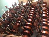 Скрипка студента практики Beginner переклейки цвета для малышей