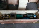Bomba de parafuso do xarope sanitário do aço inoxidável única