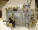 Subassieme della pompa di iniezione di carburante dell'addetto al caricamento di FOTON LOVOL (13053063)