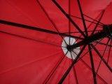 """23 """"8 panneaux Auto Open Round Rib Droit Umbrella (SU029)"""