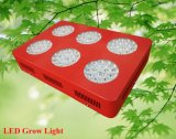 6 marche 324W LED Grow Light per Greenhouse