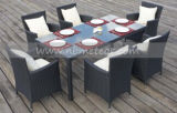 Rota Furntiure al aire libre que cena el &Chair de mimbre del vector del jardín determinado (MTC-145)