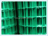 電子Galvanized Steel/PVC Coated Welded Wire Mesh