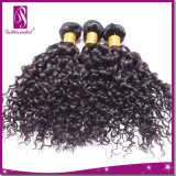 Tecelagem Curly do cabelo da onda de Inche do preço de fábrica 14