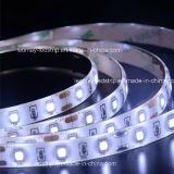 Super heller 24V LED Streifen für Gebäude-Dekoration (SMD2835-60LEDs-W)