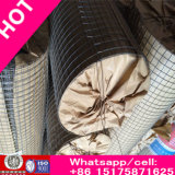 High Quality Stainless Steel Wiremesh/Crimped Wire Mesh (To manufacture)