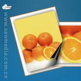 Papel Fotográfico Magnético Auditado SGS (brillo y Mate)