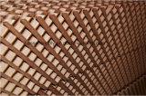 Garniture avancée de refroidissement par évaporation de Chambre de poulet pour des Chambres de volaille