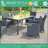 椅子(魔法様式)の古典的な椅子を食事する一定のテラスの椅子を食事する熱い販売の椅子のガーデン・チェアの藤