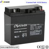 Tiefe Schleife AGM-Sonnenenergie-Batterie 12V24ah für UPS-Batterie