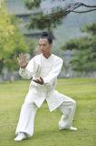 Kleding van de Praktijk van de Systemen van de Chi van Wudang Tai van het taoïsme de lang-Sleeved Vloeibare Toevallige